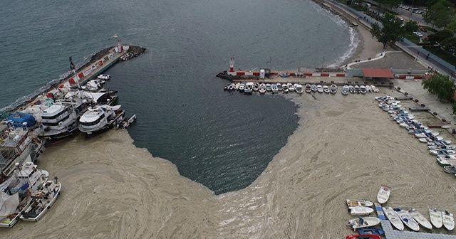 Marmara Denizi tehdit altında