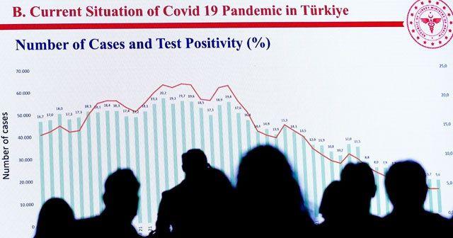 Tolunay: Pozitif oranı yüzde 20'lerden 5'lere düştü