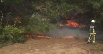 Bunalıma giren genç hem kendini hem ormanı yaktı