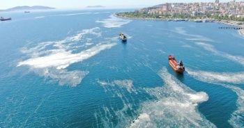 İstanbul sahillerinde deniz salyalarında yoğunluk arttı