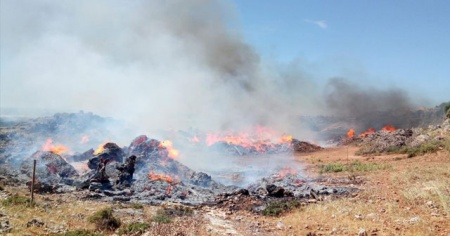Antalya'da sazlık alanda yangın