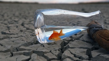 ABD kuraklık tehlikesi altında
