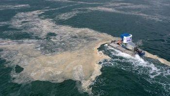 Bakan Kurum açıkladı: Toplamda 7 bin 430 metreküp müsilaj temizlendi