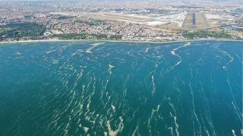 Bakırköy kıyılarındaki müsilaj havadan görüntülendi