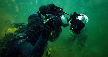 Bilim insanları deniz salyasının etkilerini araştırıyor