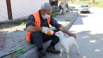Bolu'da tebessüm ettiren görüntü: Oğlağıyla sokakları temizliyor
