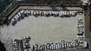 Çanakkale kıyılarında müsilaj yoğunluğu görülüyor