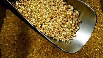 Kongo'da 1,9 milyon dolarlık altın ele geçirildi