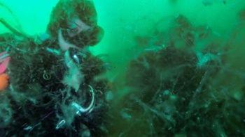 Korkutan görüntü: Marmara'da deniz dibinde yoğun müsilaj