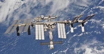 NASA ve SpaceX uzaya mürekkep balığı gönderdi