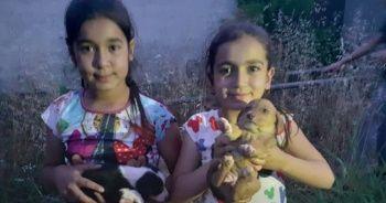 Ölüme terk edilen yavru köpekleri çocuklar kurtardı
