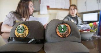Orman Genel Müdürlüğü 2,083 personel alımı yapacak! Başvuru şartları nedir ve başvuru nasıl yapılır?