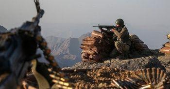 PKK'ya darbe! 2 terörist etkisiz hale getirildi