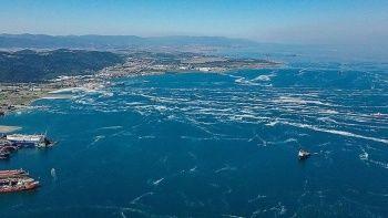 Türkiye'de müsilaj seferberliği!  392 metreküp toplandı