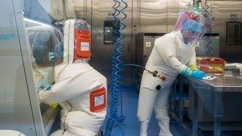 Wuhan Laboratuvarı'ndaki bilim insanından çarpıcı açıklamalar