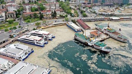 Bakan Kurum'dan deniz salyası açıklaması: Eylem planımızı paylaşacağız