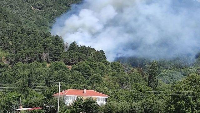 İzmir Ödemiş'teki orman yangını kontrol altında