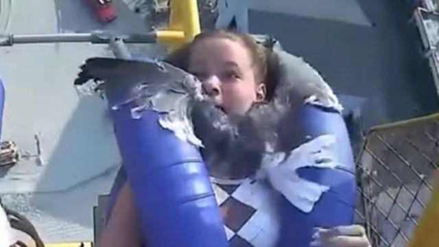 Lunaparkta korkusu ikiye katlandı: Yüzüne martı çarptı