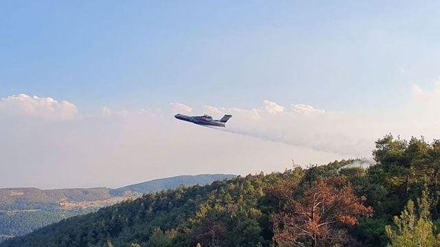 Rusya, yangınlar için 11 hava aracı daha gönderecek