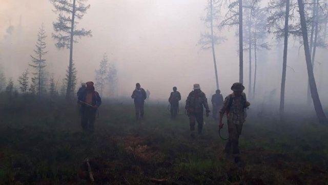 Sibirya'daki orman yangınları 1.3 milyon hektarı küle döndürdü