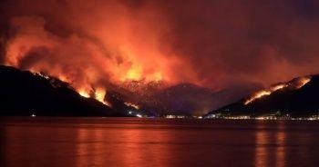 21 ilimizde çıkan 63 yangının 42'si kontrol altına alındı