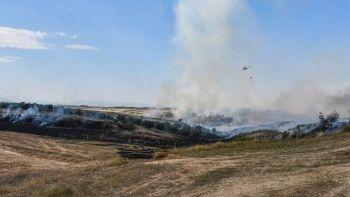Adana'da orman yangını: Ekipler seferber oldu