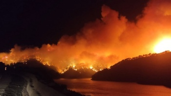 Adana Kozan'da orman yangını