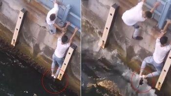 Denize düşen kediyi ayaklarıyla kurtardı