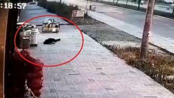 Eşi tarafından öldürülen polisin görüntüsü ortaya çıktı