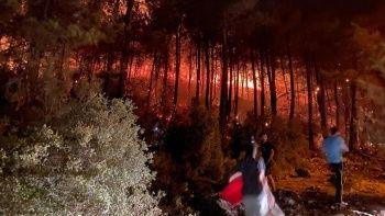 Fethiye'de orman yangını: Kovayı kapan ormana yardıma koştu
