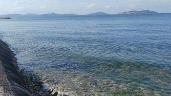 İstanbul kıyılarında müsilaj etkisini kaybetti