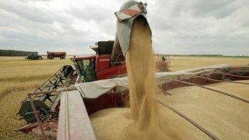 Küresel gıda fiyatları vites düşürdü