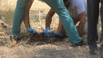 Boş araziye 'bebek gömüldü' iddiası mahalleyi ayağa kaldırdı