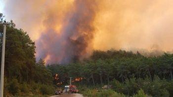 Manavgat'taki yangında 4. gün: Alevler metrelerce yükseldi