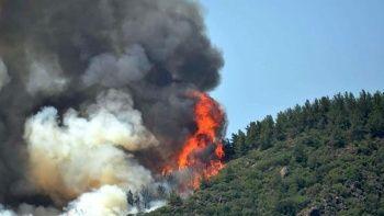 Marmaris'teki yangın kamerada: Biri ormanı yakıyor