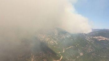 Mersin'de orman yangını: Evler boşaltıldı, Bakan Pakdemir'li olay yerinden takip etti