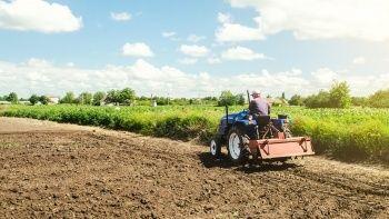 Tarımda üretici fiyatları 1 yılda yüzde 21 arttı