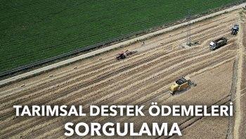 Tarımsal destek ödemeleri sorgulama: Tarımsal destek ödemeleri yattı mı?