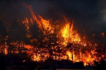 Türkiye yanıyor: Manavgat, Adana, Osmaniye ve Mersin, Kayseri