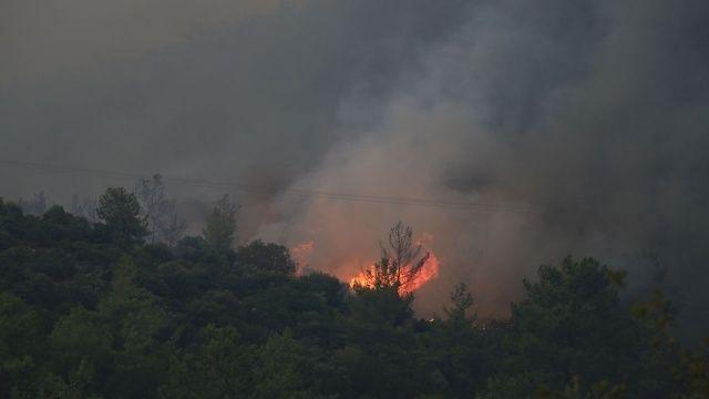 Ateşin ortasındaki orman müdürü: Bir helikopter 6 uçağa bedel