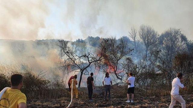 Atmaca yangın çıkardı! 150 dönüm arazi kül oldu