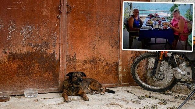 Cansız bedenleri bulunan çiftin köpeği kapıdan ayrılmadı