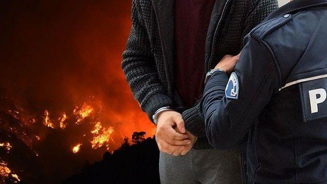 Mersin'de orman yangını çıkaran şahıs tutuklandı