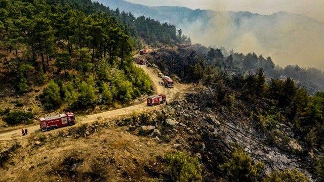 Son dakika haberi: Bakan Koca'dan 'orman yangınları' açıklaması: Antalya ve Muğla'da toplam can kaybı 8