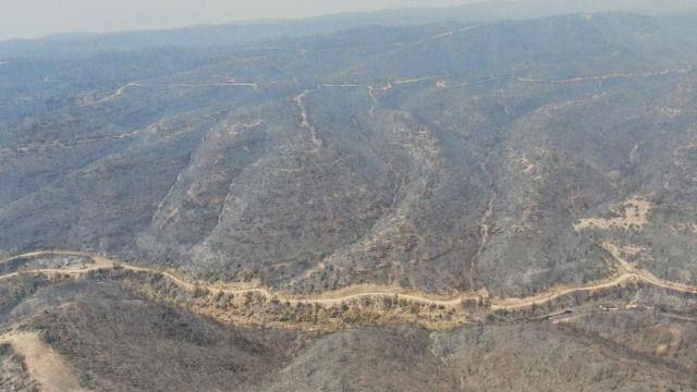 Son dakika haberi: Manavgat'ta orman yangınıyla ilgili tutuklama