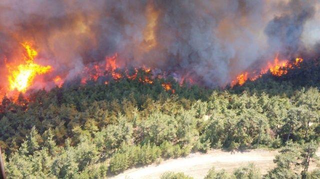 Terör uzmanı Başbuğ: Yangınlar doğal değil