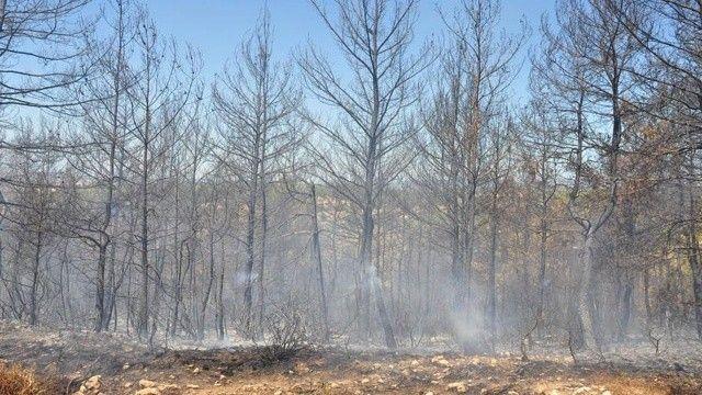 Uzmanlar yangın bölgelerindeki hava durumunu yorumladı