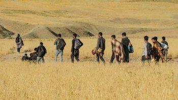 ABD istedi BAE kabul etti: 5 bin Afganı geçici olarak alacak