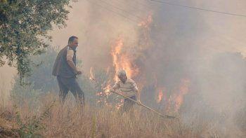 Antalya Manavgat'ta yangın yeniden başladı