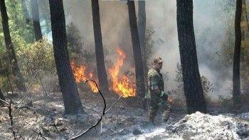 Azerbaycan'dan orman yangınları için ilave ekip